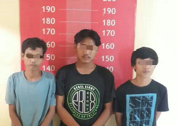 Tembakau Gorilas di Tangerang : Tiga Pemuda Diamankan Polsek Balaraja