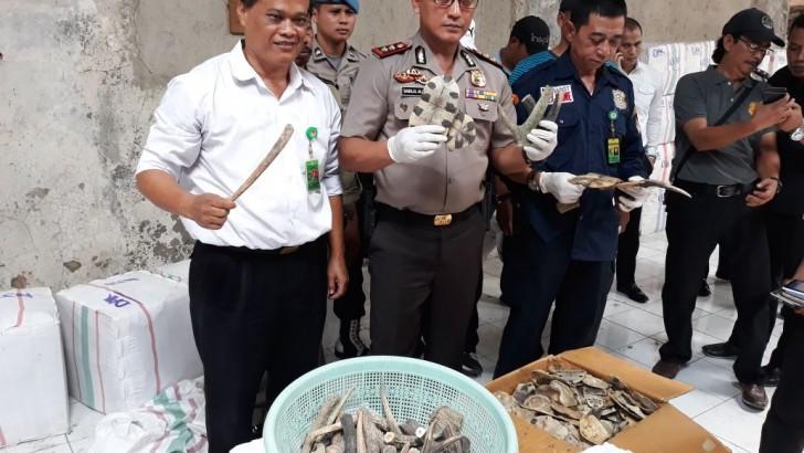 Polresta Tangerang Gagalkan Ekspor Cangkang Kura-Kura dan Tanduk Rusa
