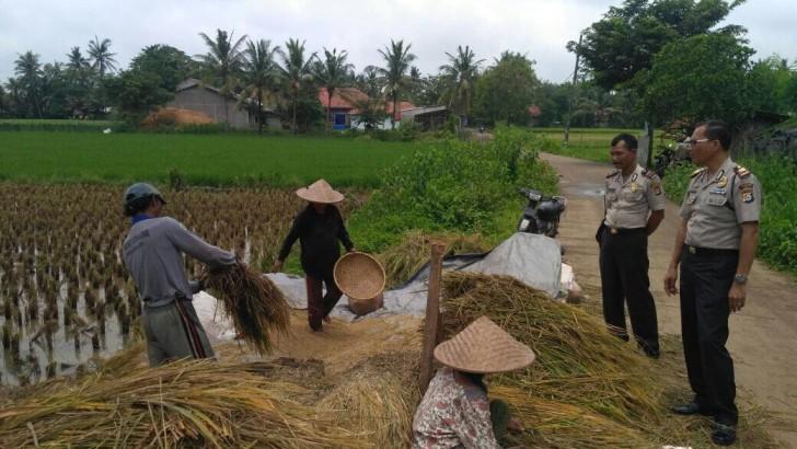 Kapolsek Rajeg Patroli Dialogis ke Petani di Desa Ranca Bango